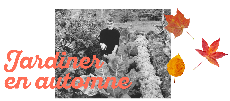 5 bonnes raisons de se lancer dans le jardinage en automne
