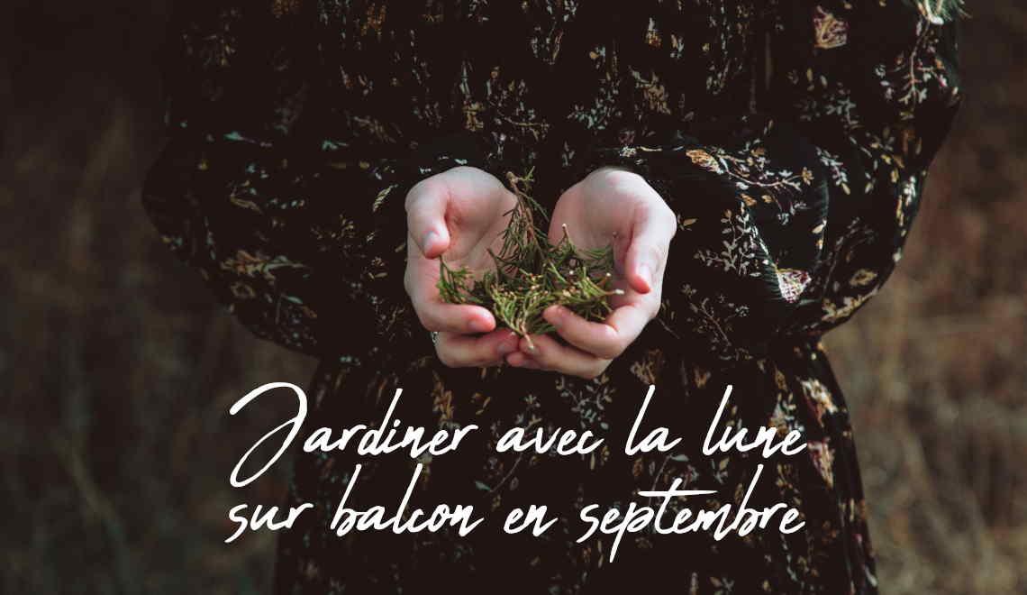calendrier pour jardiner avec la lune en septembre au potager de balcon