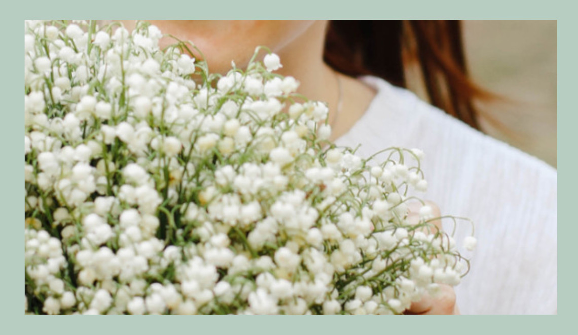 blog jardinage : culture du muguet, fleur de mai porte chance