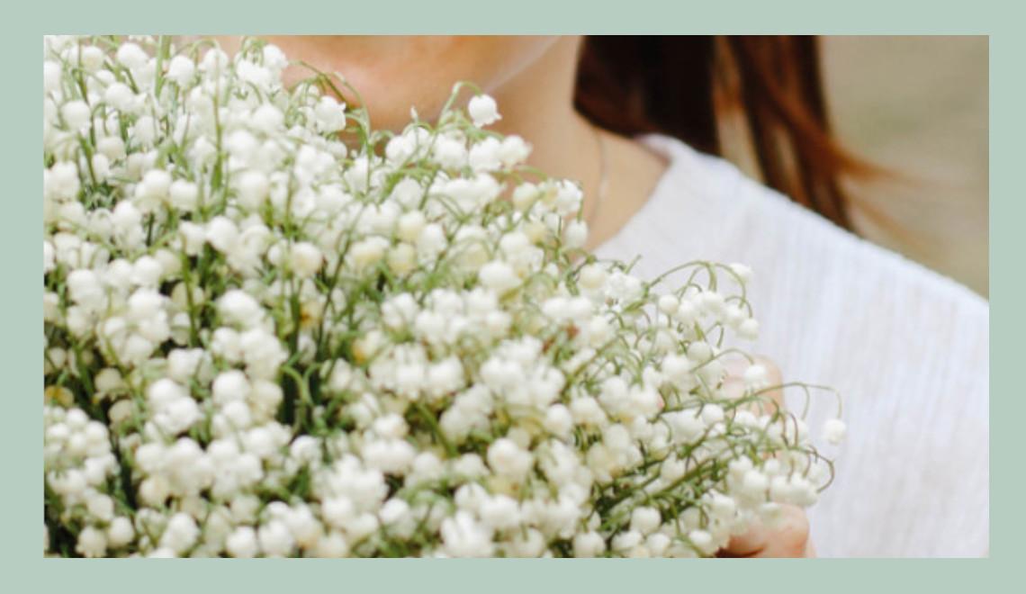 blog jardinage : culture du muguet, fleur de mai porte chance